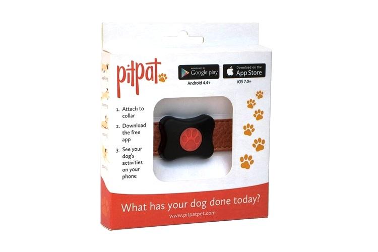Thiết bị theo dõi thú cưng tốt nhất: PitPatPet
