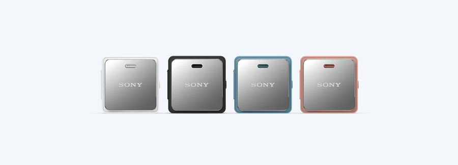 Sony SBH24