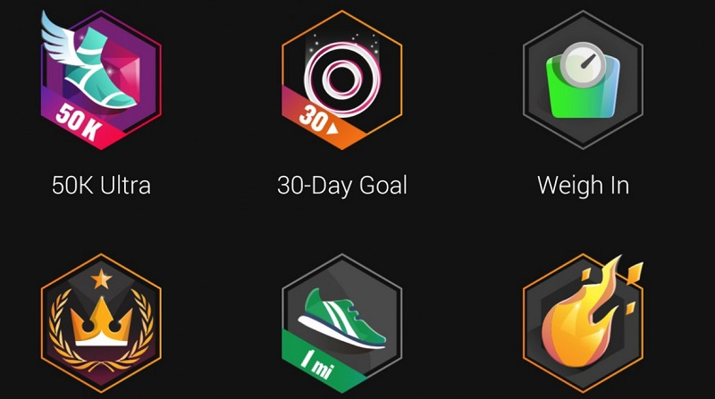 Garmin Connect Badges